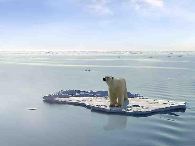 Изменения климата и катаклизмы 2018 года