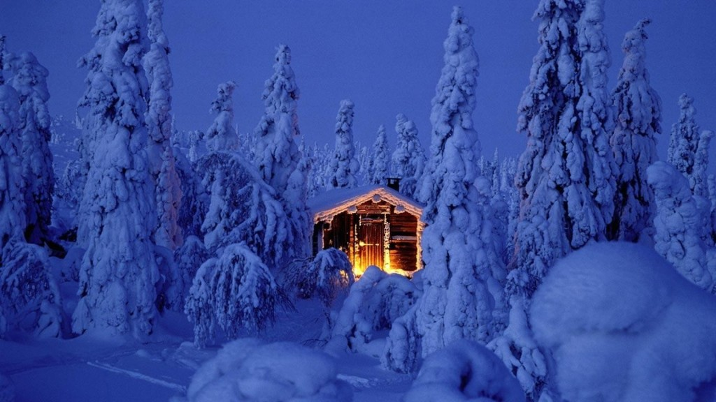 Домик среди заснеженного леса